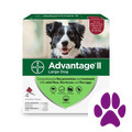 Foodland_Advantage® II 4 pack Dog_coupon_57566