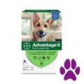 Target_Advantage® II 6 pack Dog_coupon_57564