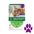 Target_Advantage® II 6 pack Cat_coupon_57568