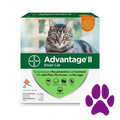 Super A Foods_Advantage® II 4 pack Cat_coupon_57573