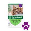 Bed Bath & Beyond_Advantage® II 6 pack Cat_coupon_58225